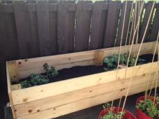 Garden Box 004